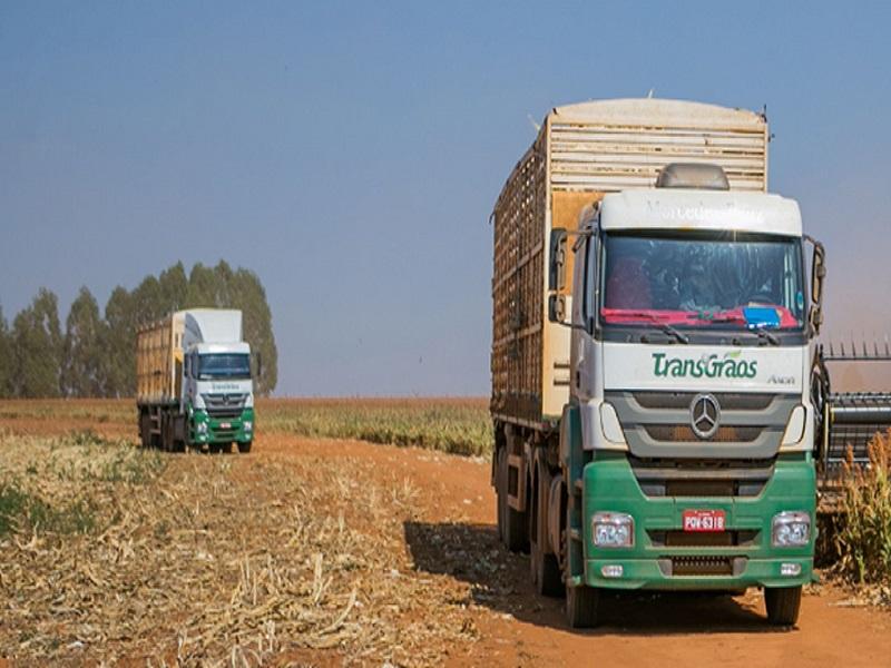 transporte milho