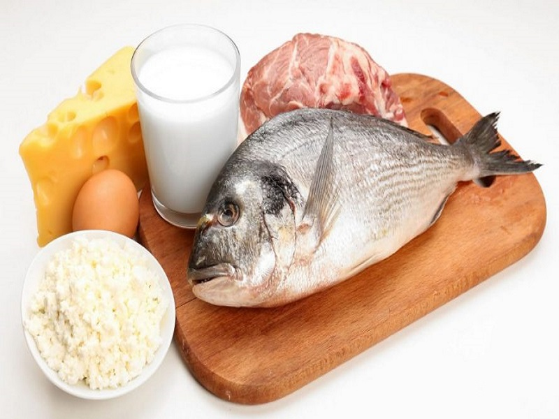 proteina-animal