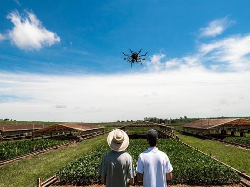 drone-625x417